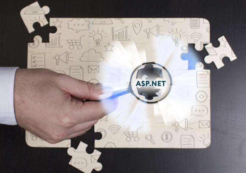 ASP.NET Web Application Development Company in United States